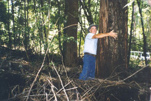 Eric isaac with 45 year old blackbutt